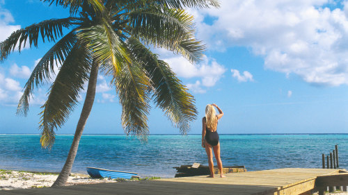 Best of Barbados Sandals Caribbean Vacation Expedia TripAdvisor Cheap
