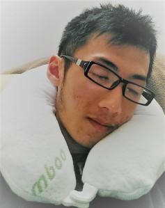Bamboo Travel Memory Foam Pillow